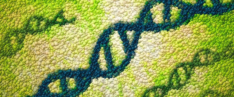 Deze biohacker past als eerste zijn eigen DNA aan