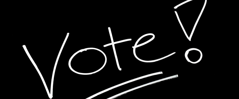 Don't Fuck Up! Ga stemmen op 15 maart