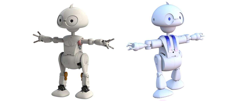 Het Intel 21st Century Robot Project