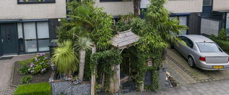 Junglehuis in Roosendaal gaat viral - en terecht