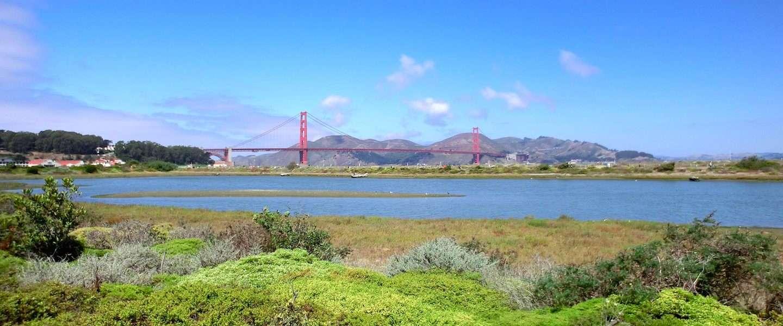 Detour leidt je zo door San Francisco