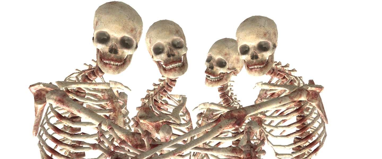 Jongen maakt Seinfeld na met skeletten op Tumblr