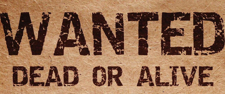 Wanted: stagiair(e) webredactie bij Dutchcowboys