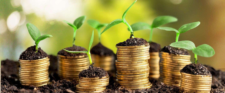 Waarom jij als ondernemer eigenlijk niet zonder een zakelijke rekening kan