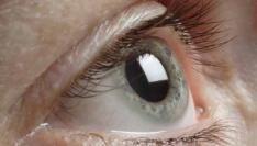 Banner Blindness: consument negeert banners