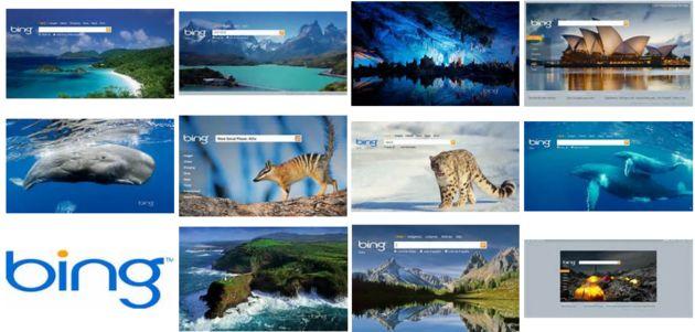 Bing claimt de beste zoekmachine voor illustraties te zijn