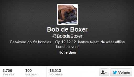 bob-de-boxer