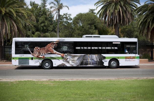 bus-7
