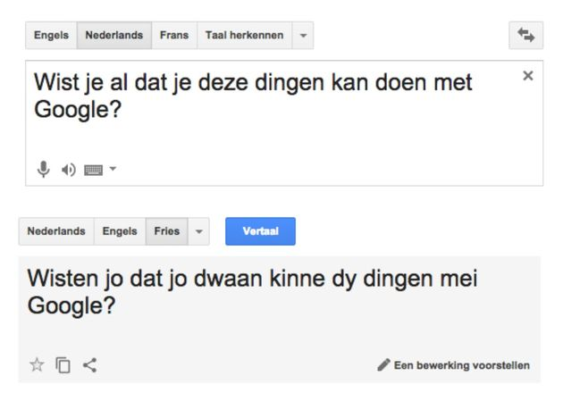 google-translate-fries