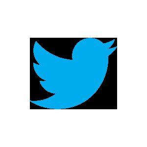 Hoe snel laadt de website van Twitter in de wereld? [Infographic]