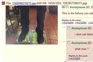 lettuce4chan