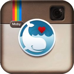 Mobygram: fotodienst Mobypicture integreert Instagram