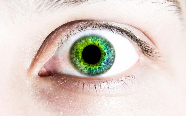 ogen-scannen