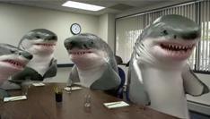 Snickers publiceert controversiële nieuwe reclame met haaien