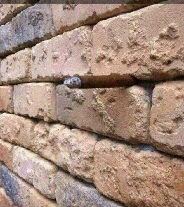 stenen-muur