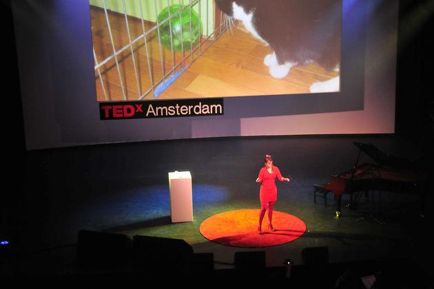 Tinkebell op TEDx: 'Niets is wat het lijkt'
