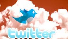 Was 2009 online het jaar van Twitter?