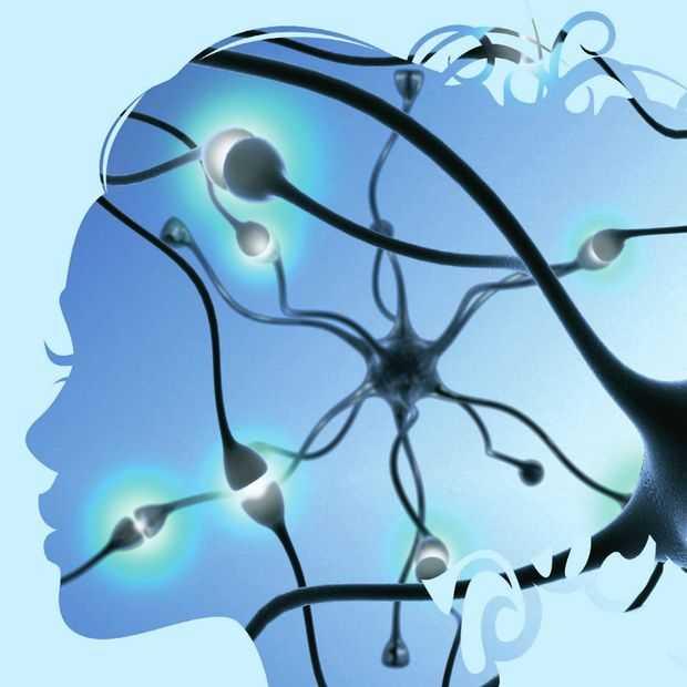 Neuro-onderzoek opent deuren voor marketing- en communicatieprofessional