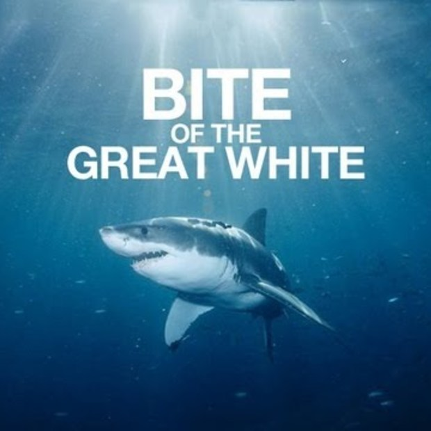 Bite of the Great White! (Shark Week remix)