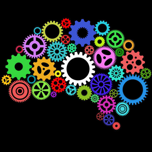 Cognitief ondernemen in een denkende maatschappij