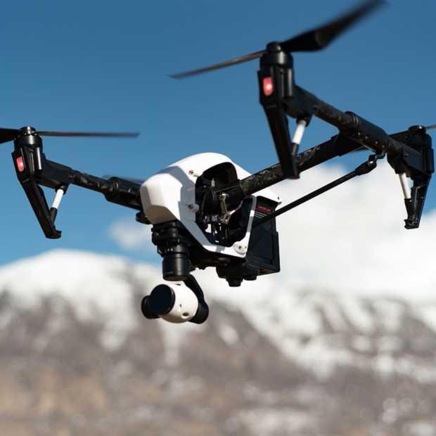 Counterdrones en roofvogels in de strijd tegen 'gewone' drones