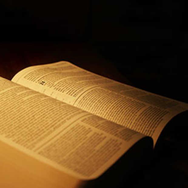 De Bijbel wordt steeds vaker online gelezen