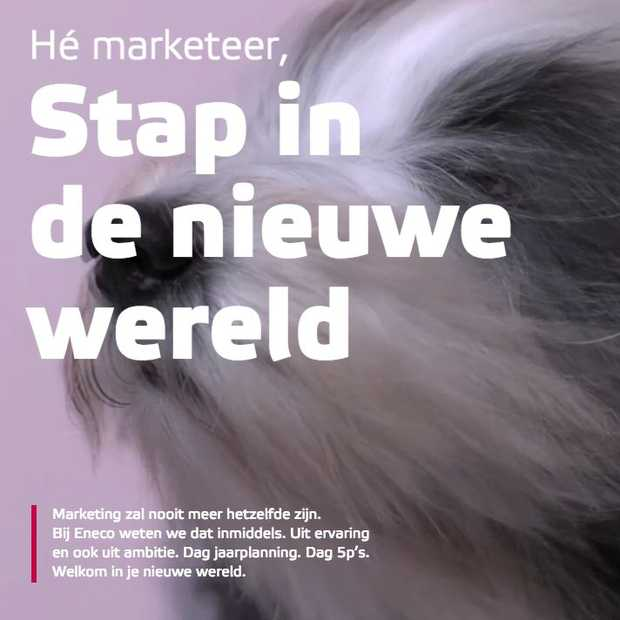 Eneco lanceert online marketing magazine