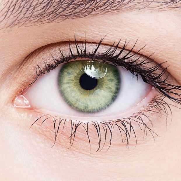 Hoe lang mag je iemand in de ogen kijken?