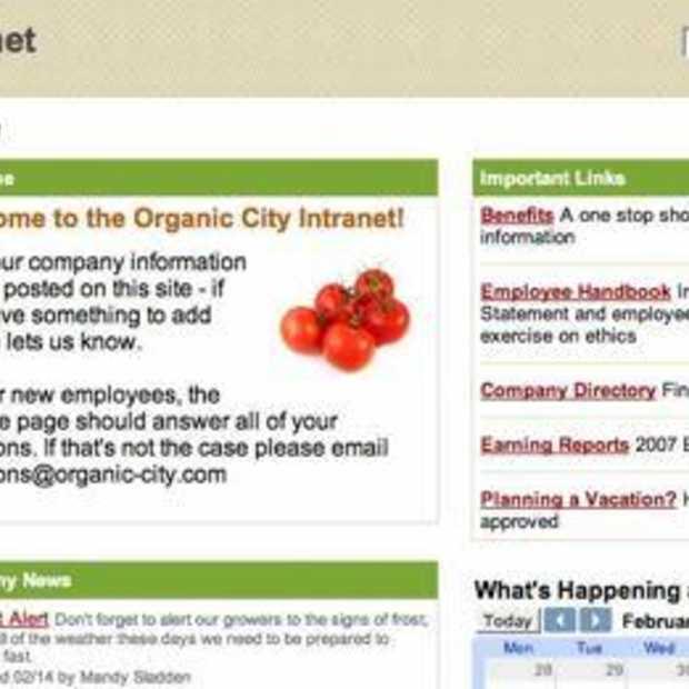 Google breidt Google Apps uit met Google Sites