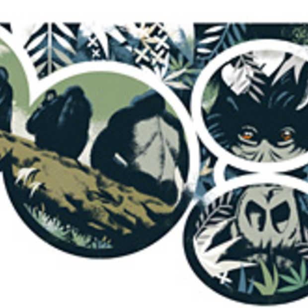 Google Doodle over Dian Fossey