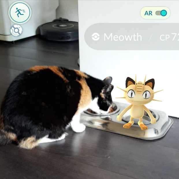 GoSnaps: Pokémon Go en Snapchat in één