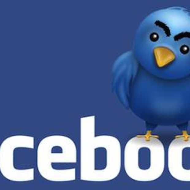 Het jaar van Facebook vs Twitter [Infographic - Demographics]