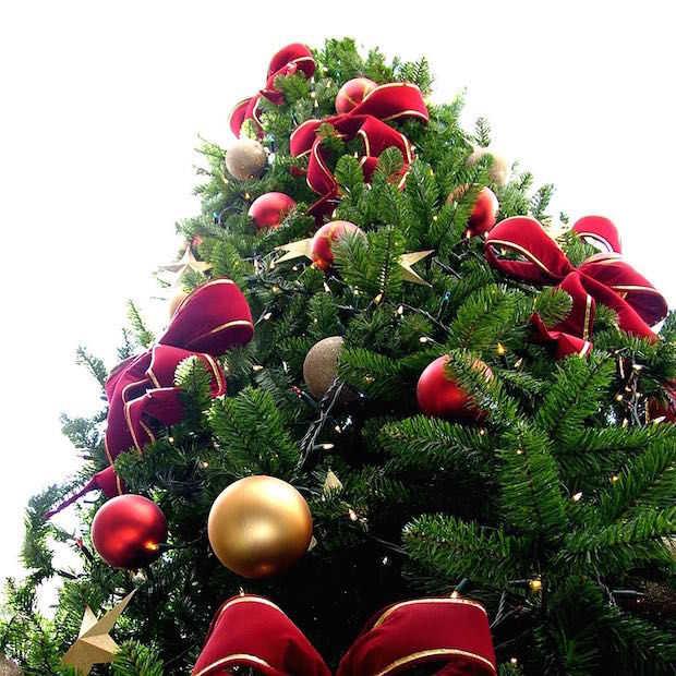De tien mooiste kerstbomen ter wereld op Instagram
