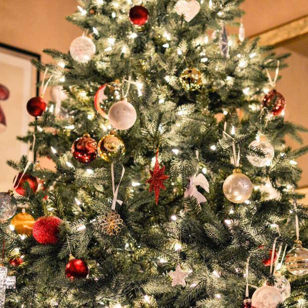 Nederland gaat massaal naar IKEA: Nordmann kerstboom voor 1 euro!