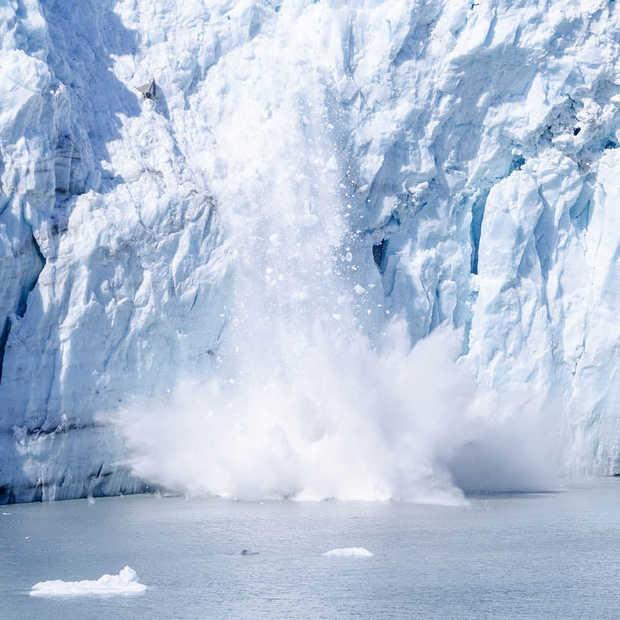 Foto van ijsbeer toont de realiteit van klimaatverandering