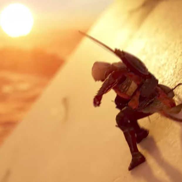 Microsoft's games op E3 2017: check alle trailers
