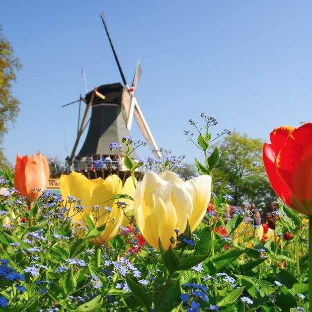 """""""Zeven redenen waarom Nederland het land van de toekomst is"""""""