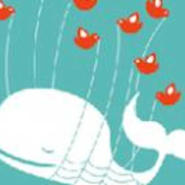 Over Twitterkritiek, Wisdom of Crowds en de technology hype cycle