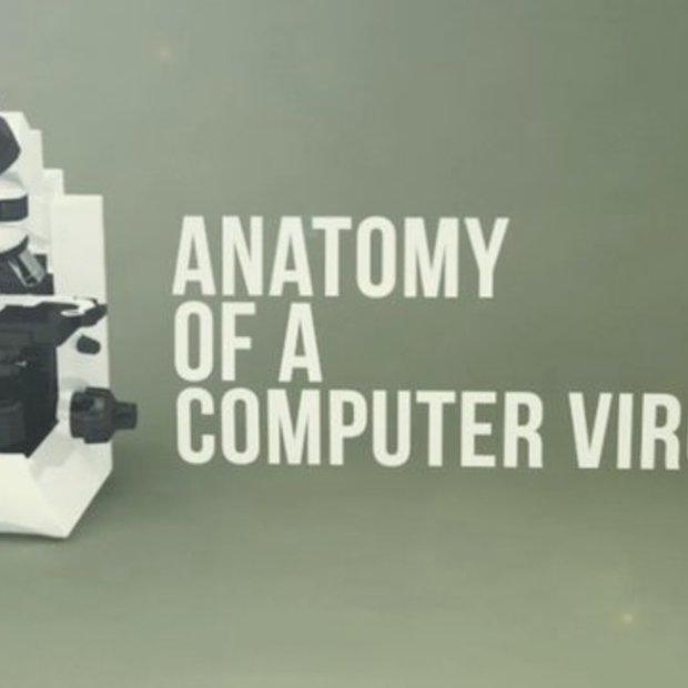 De anatomie van een computervirus