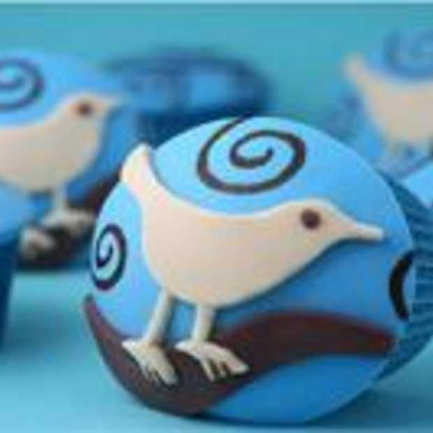 Twitter passeert de 145 miljoen gebruikers