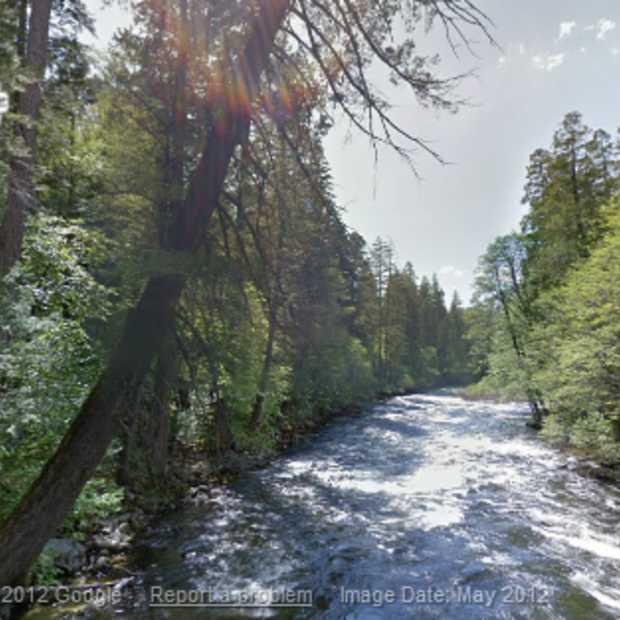Wandelen door het bos met Google's Street View