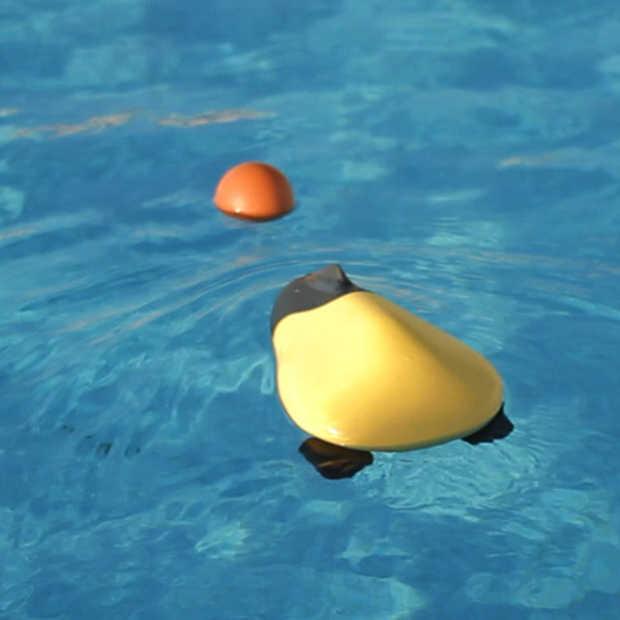 Ziphius, drone die onderwater foto's en video's maakt