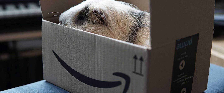Amazon Prime Day: komt het er weer aan?