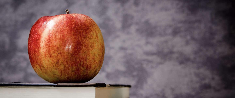 Kopen, kopen, kopen: Apple koopt bedrijven op