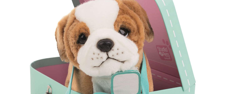 Knuffels komen tot leven met de nieuwe Augmented Reality app 'Studio Pets'