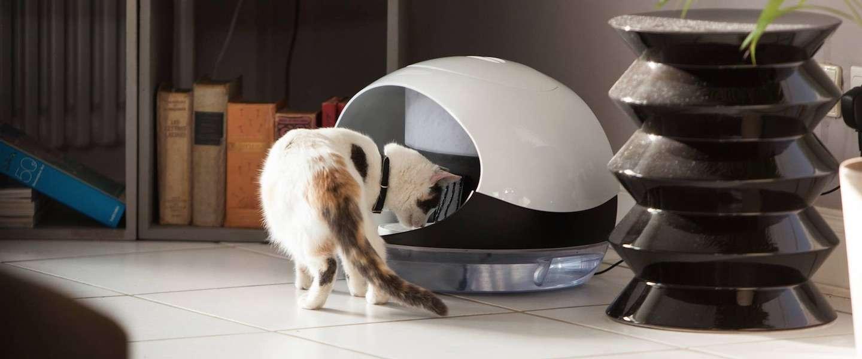 De Catspad maakt leven met een kat een stuk makkelijker