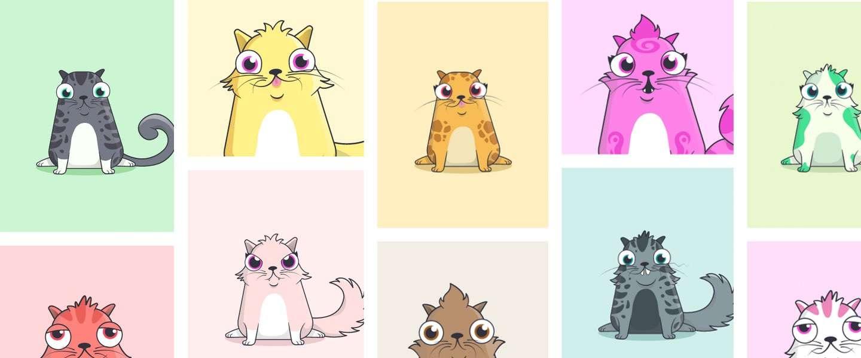 Blockchain-katten enorm populair: duurste al voor ton verkocht