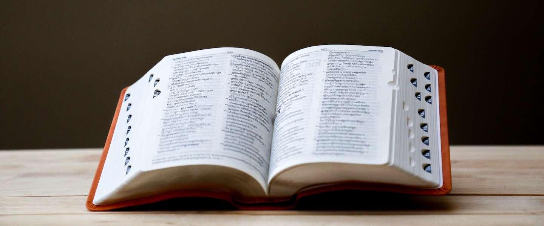 Vandaag is het de 'Dag van de Moedertaal'! Hoeveel talen worden er in Nederland gesproken?