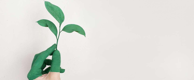Zet duurzame stappen en doe mee met 'Een Dagje Groen'