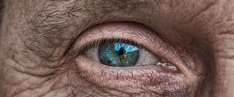 Slechts 7 procent van ons DNA maakt ons menselijk